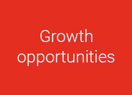 Opportunità di crescita